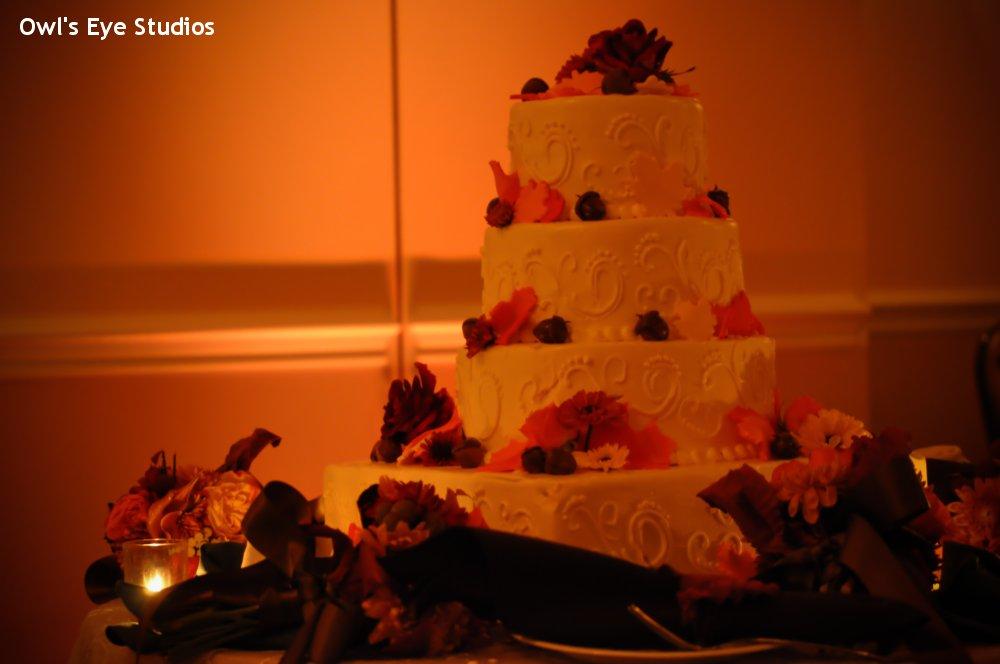 Hudson Valley Wedding DJ Bri Swatek Cake Uplighting Links at Union Vale Owls Eye Studios