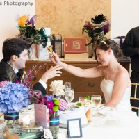 Hudson Valley Wedding DJ Bri Swatek Toast Dutchess Manor Allan E Levine Photography